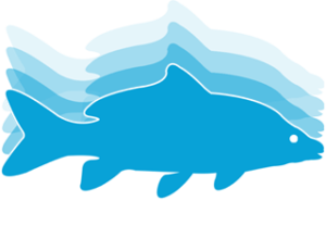 Fish Tracker - paas.co.uk